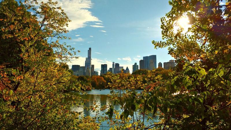 Nova Iorque: carros vão ser proibidos no Central Park