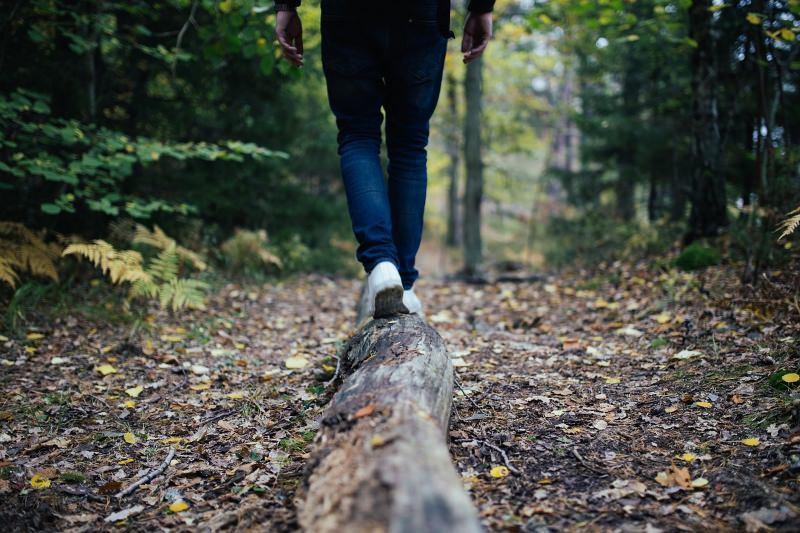 Caminhar na floresta