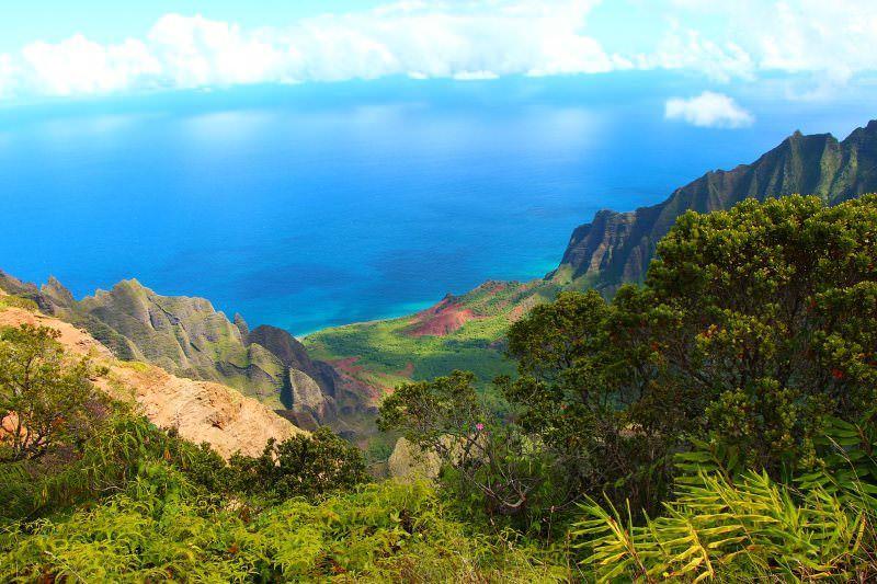 Havai torna-se o primeiro estado dos EUA a proibir pesticida perigoso para crianças
