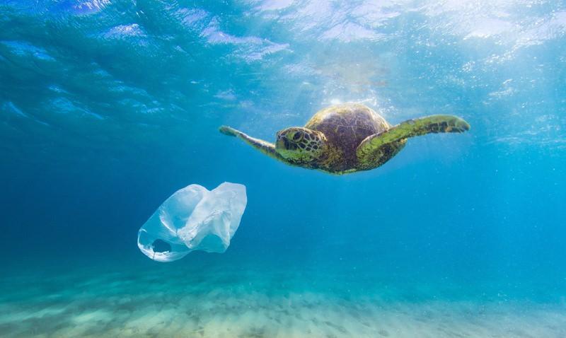 10 dicas para reduzir o consumo de plástico quando viaja ou vai de férias