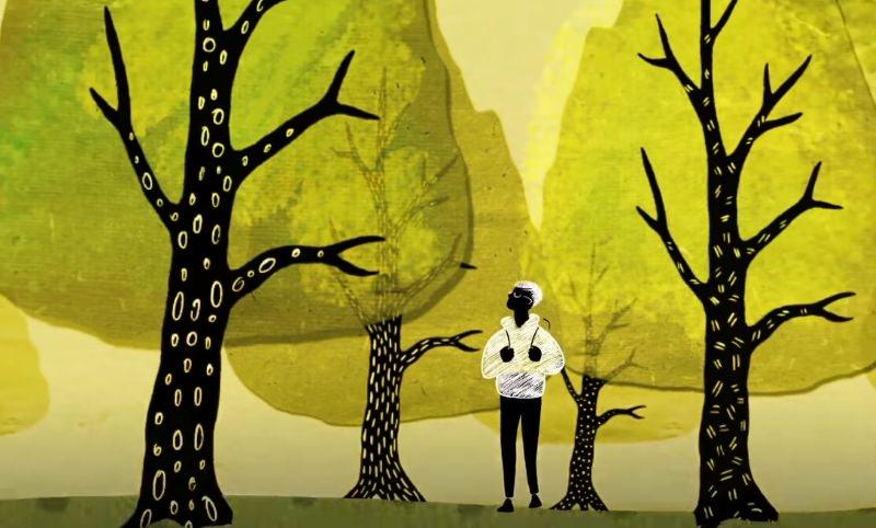 Como as árvores conversam secretamente umas com as outras