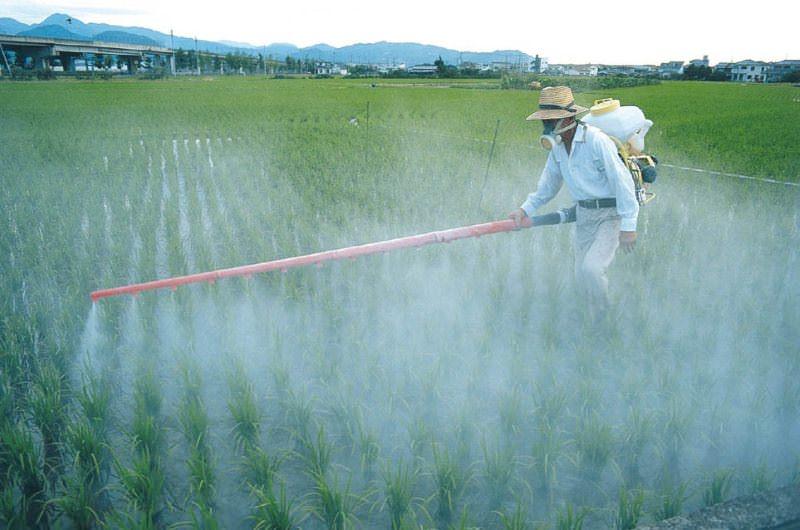Brasil: Justiça suspende produtos com glifosato e outros agroquímicos