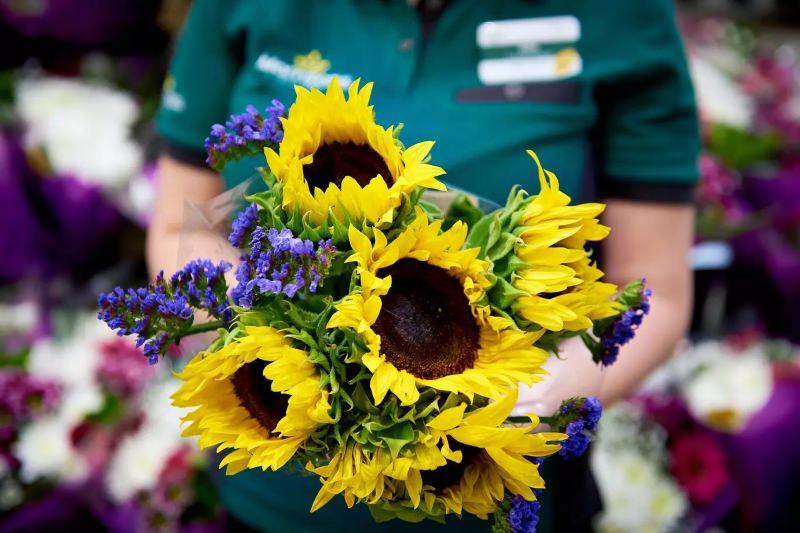 Supermercado vende flores imperfeitas a preços reduzidos para cortar no desperdício