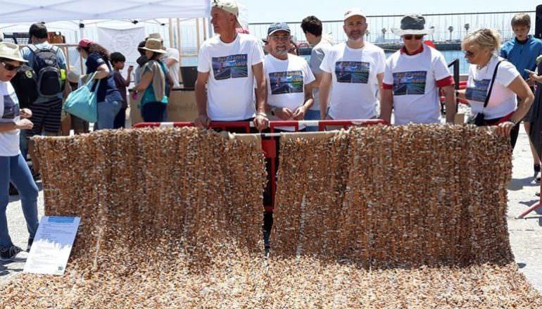 """Seixal vai ter o """"maior cordão de beatas do mundo"""" candidato ao Livro do Guinness"""