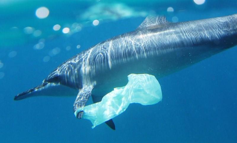 Jamaica vai proibir sacos de uso único, palhinhas de plástico e esferovite em 2019