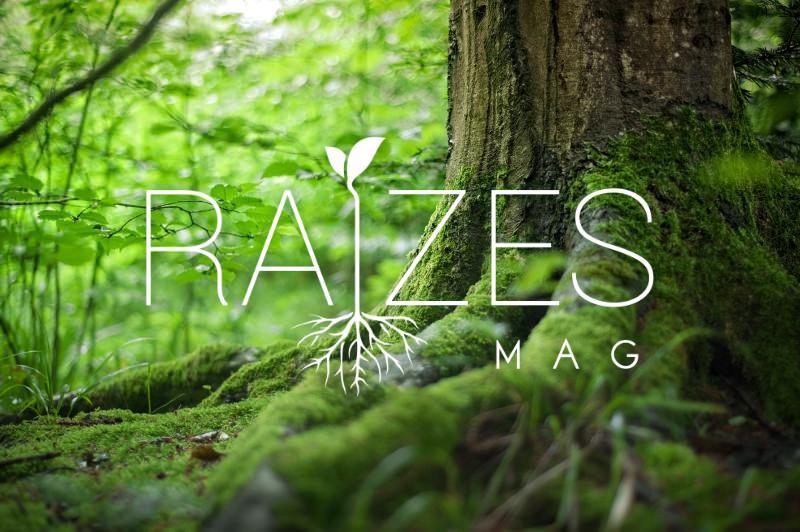 Saiu hoje a Raízes Mag, a nossa revista online