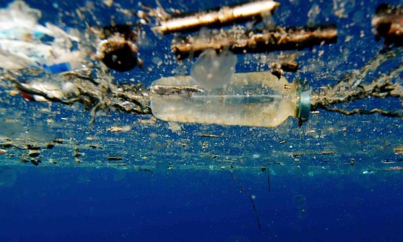 Parlamento Europeu aprova proibição da venda de plásticos de uso único