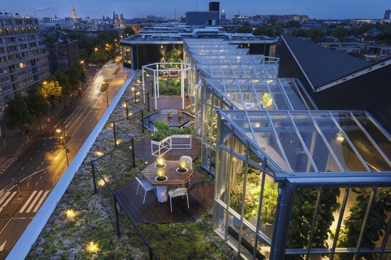 Jardim no telhado do hotel