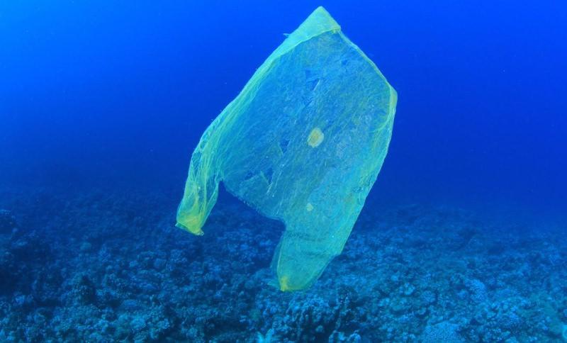 Peru proíbe sacos de plástico, palhinhas e embalagens de esferovite no setor público
