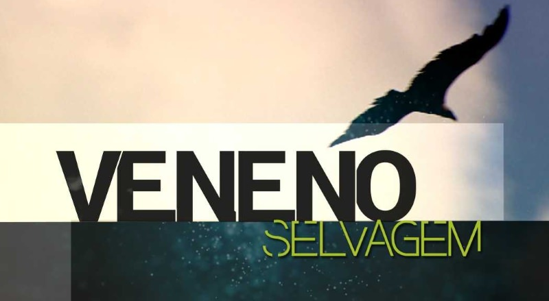 """Os animais envenenados em Portugal: Reportagem """"Veneno Selvagem"""", hoje na RTP1, às 21h"""