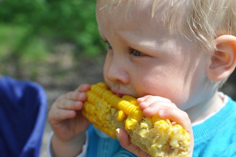 Criança a comer milho