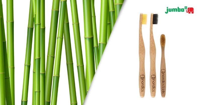 Jumbo lança gama de escovas de dentes em bambu