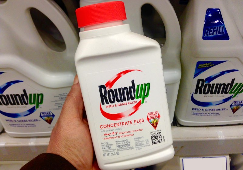 "França proíbe Roundup Pro 360 (glifosato) e deixa Bayer ""surpreendida"""