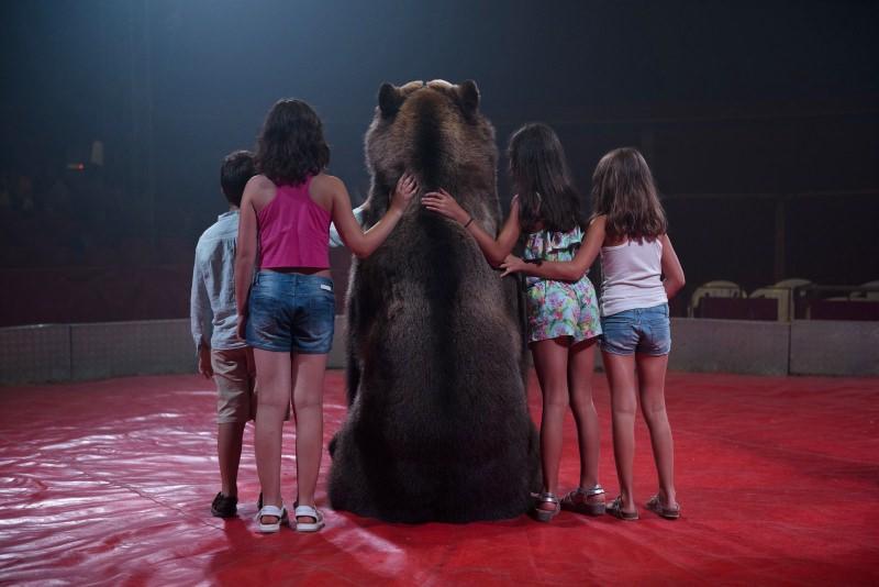 Madrid aprova o fim dos circos com animais selvagens