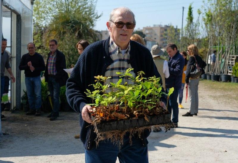 Viana do Castelo distribui 115 mil árvores autóctones aos munícipes para reflorestação
