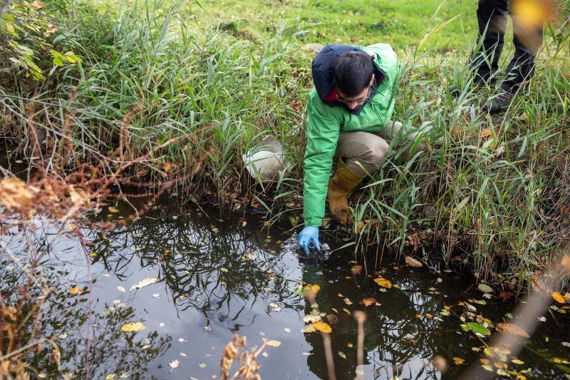 Há pesticidas proibidos e antibióticos a poluir os rios da Europa, revela estudo