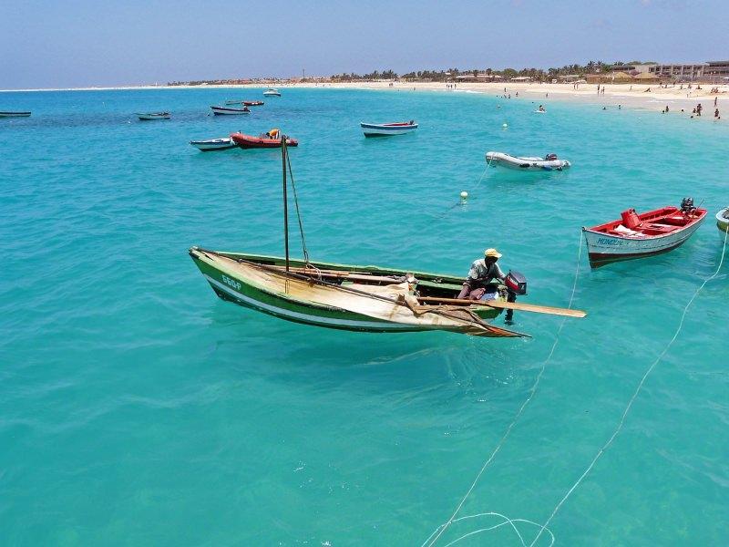Investigadores da UC ajudam a salvar espécies marinhas ameaçadas em Cabo Verde