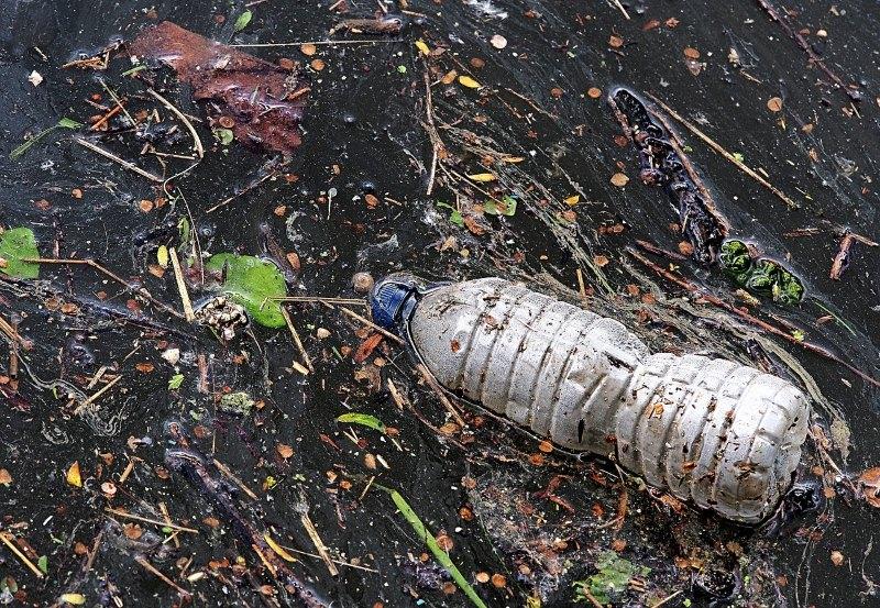 Lisboa vai receber exposição internacional sobre o problema do plástico nos oceanos