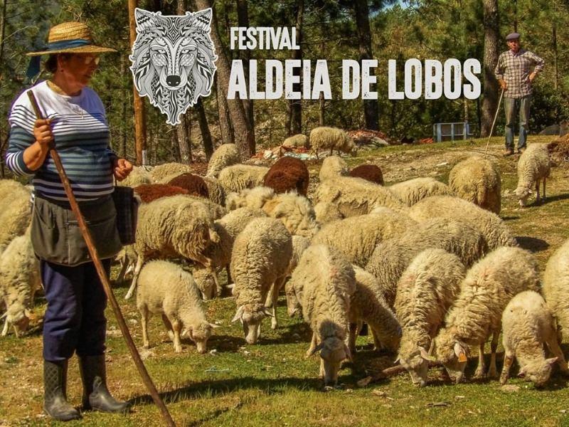 Aldeia de Fafião organiza festival em prol da preservação do lobo