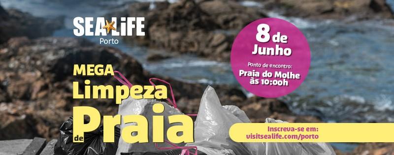 Vem aí uma mega limpeza de praia no Porto