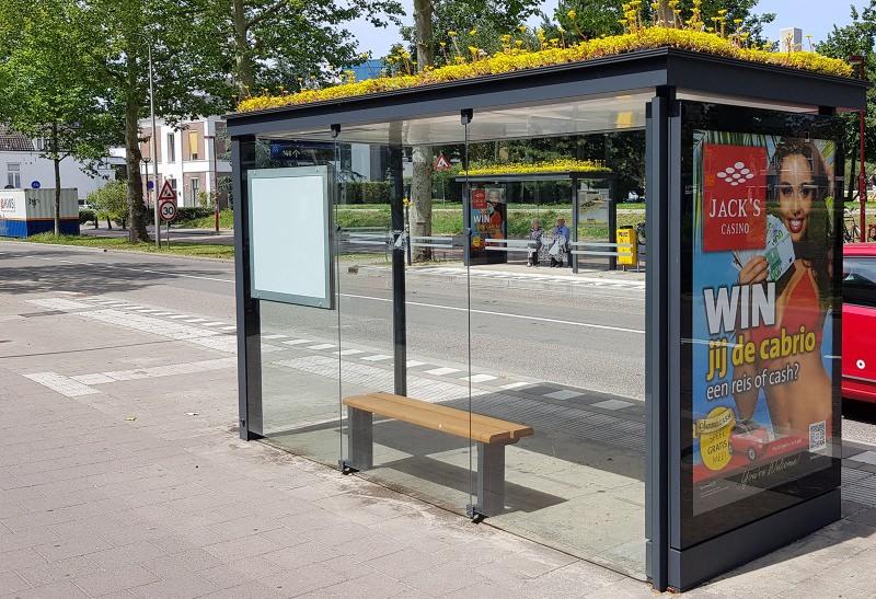 Cidade holandesa cria coberturas verdes em paragens de autocarro para as abelhas