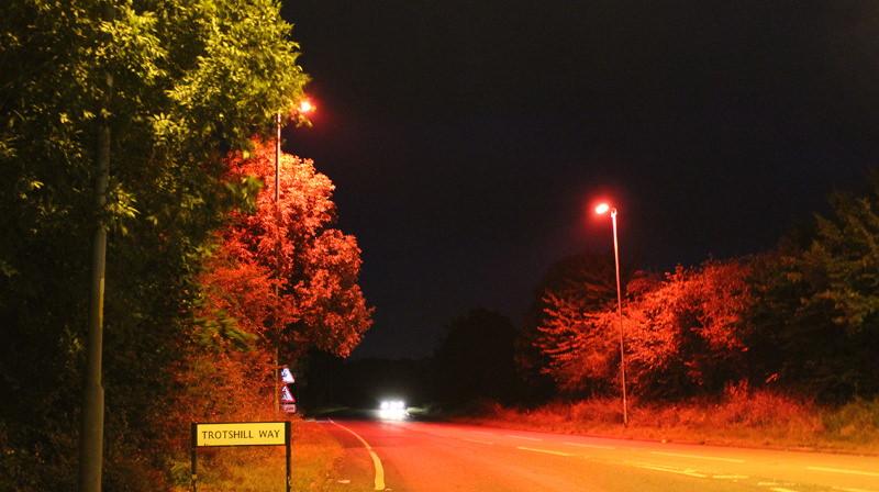 Condado inglês instala lâmpadas LED vermelhas em estrada para proteger morcegos