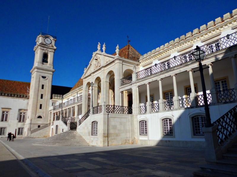 Universidade de Coimbra vai deixar de servir carne de vaca nas cantinas