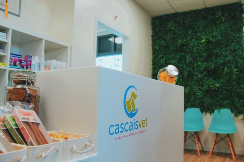 Cascais tem agora o centro veterinário mais sustentável de Portugal