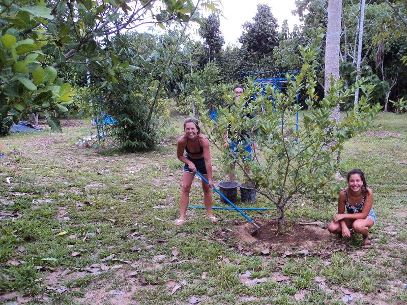 A experiência da Catarina na eco-aldeia Gaarawé Village