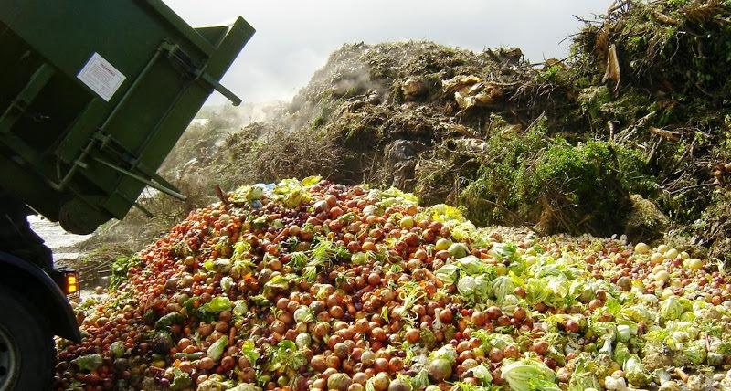 Desperdício alimentar anual dava para alimentar 2 mil milhões de pessoas