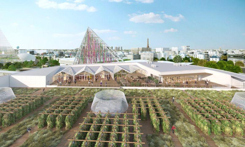 Num telhado de Paris nasceu a maior horta urbana do mundo