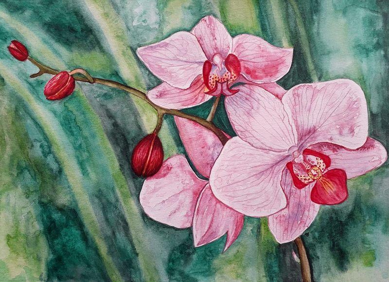 """Cláudia Joaquim: """"a natureza é a minha maior fonte de inspiração"""""""