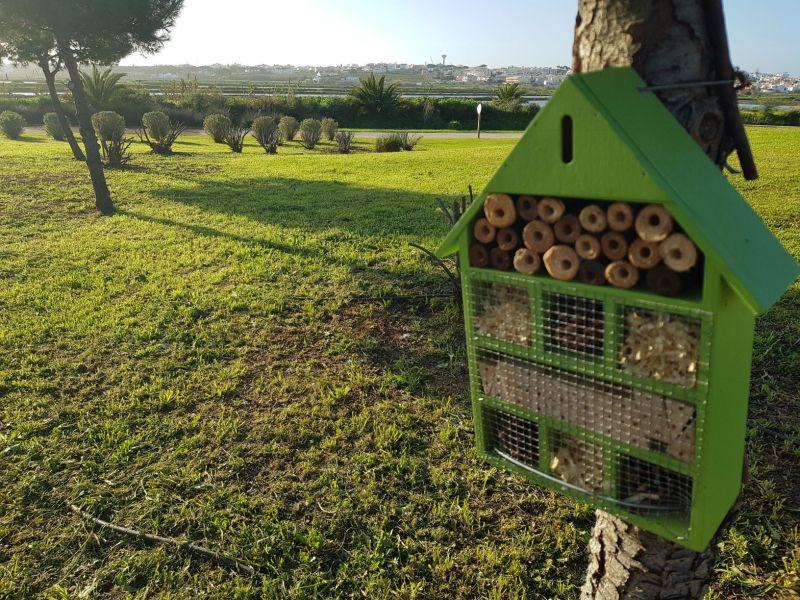 Faro instala 50 caixas-ninho e abrigos para insetos nos jardins da cidade