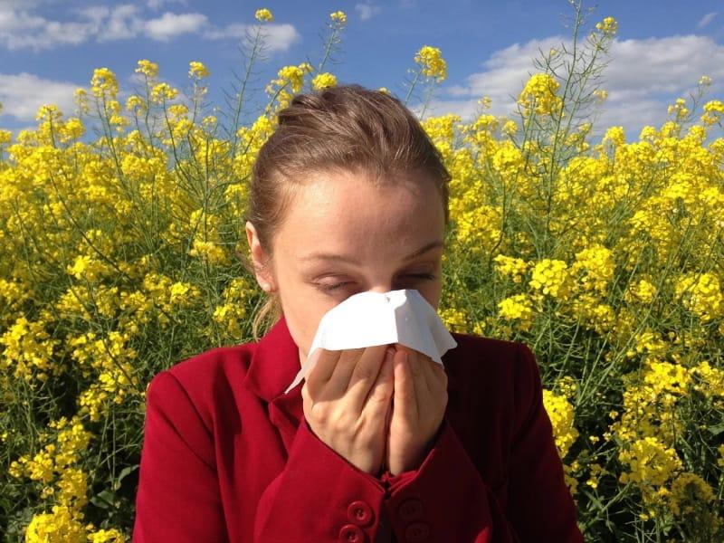 Dicas para quem tem problemas de alergias na primavera