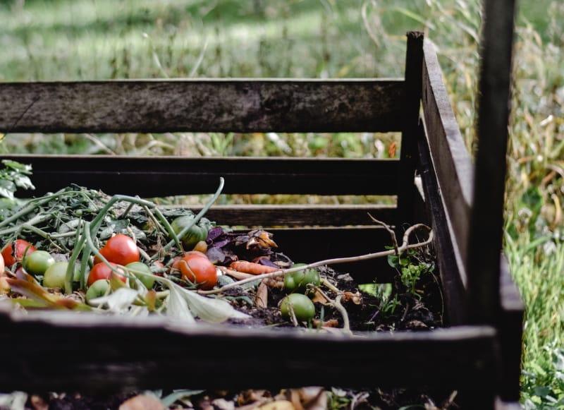 Para quando poderemos prever a compostagem a nível autárquico?